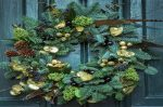 Picking the Perfect Christmas Wreath for Your Front Door