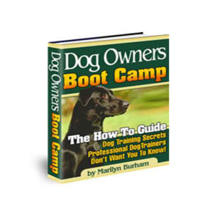 Dog Owners Boot Camp Guide