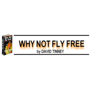 How To Fly For Free - Strategies For Free Travel